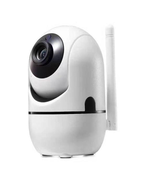 AI IP camera