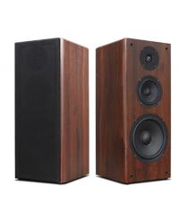 VSonic SP870 Professional Karaoke Speaker